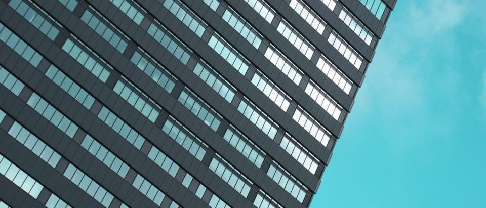 portfolio-03-gallery-image-01