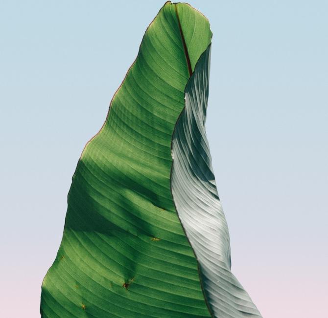 portfolio-02-gallery-image-01